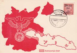 Böhmen Und Mähren Sammlerkarte Aus Reichenau  - Sudeten 1938 - Briefe U. Dokumente
