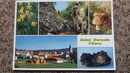 CPM CEPE CHAMPIGNON ST GERMAIN L HERM 63 JONQUILLES AMETHYSTES CASCADE DE LA ROCHE GAUMONT - Mushrooms