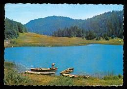 Le Lac De Genin En 1970 édition Cellard - Unclassified