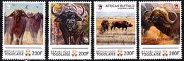 TOGO 2012 FAUNA World Of Wildlife: African Buffalo, MNH - W.W.F.