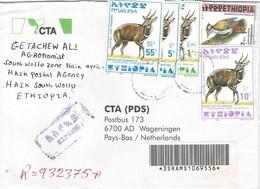 Ethiopia 2001 Haik Woodpecker Bushbuck Registered Express Cover - Ethiopië