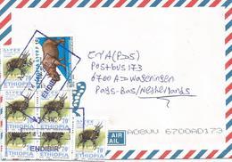 Ethiopia 2012 Endibir Rhino Bushbuck Cover - Ethiopië