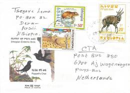 Ethiopia 2000 Diera Rock Hyrax Deforestation Tree Planting Bushbuck Cover - Ethiopië