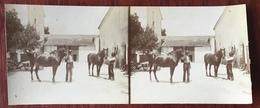 Stéréo 2 Juin 1898 La Plauchude, à Mauguio Près Montpellier. Exploitation Viticole. Chevaux. - Stereoscopio
