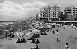 EGITTO-ALESSANDRIA-SPIAGGIA- - Alexandria