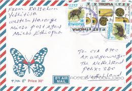 Ethiopia 2006 Mieso Postal Agency Beehive Bushbuck Cover - Ethiopië