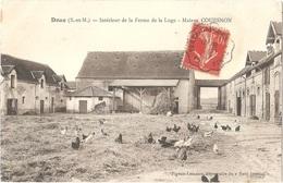 Dépt 77 - DOUE - Intérieur De La Ferme De La Loge - Maison COUESNON - Édit. Pigeon-Lemaire, Dépositaire Du Petit-Journal - Altri Comuni