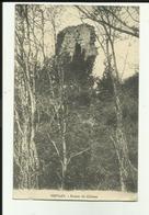 70- Haute Saone - Oiselay - Ruines Du Chateau - - Other Municipalities