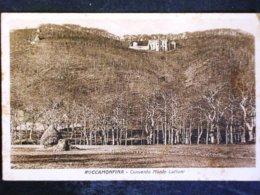 CAMPANIA -CASERTA -ROCCAMONFINA  -F.P. LOTTO N°398 - Caserta