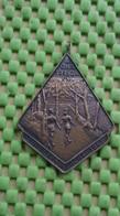 Medaille / Medal - Medaille -  Medaille -Zuidlaren Tocht W.C.H.S. -1963  - The Netherlands - Nederland