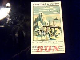 Chocolal De L'union  Vignette  Bon Point No 146 Pour L Album La Vie Aux Poles - Autres