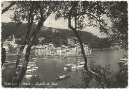 W1608 Portofino (Genova) - Angolo Di Pace - Auto Cars Voitures / Viaggiata - Italia