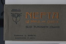 Nefta 1910 - Livret Souvenir 24 Cartes Postales Animées TTB - Tunisie