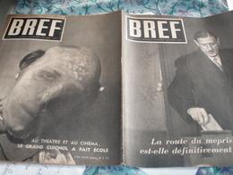 BREF/DE GAULLE /COLOMBEY /SENAT PAUL FOLLFUS /BRIAND / CAILLAUX /PIERRE BOURDAN  CRISE EUROPE /RESISTANCE OBERLE - Books, Magazines, Comics