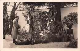 MILITARIA 1938  -  Adolf  HITLER   Am Grabe Der.. ( With Stamps Osterreich ) - War 1939-45