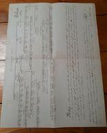 1876 ALBERO GENEALOGICO FAMIGLIA SOLDATI - GAIBA - ROVIGO - Vecchi Documenti