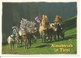 (a) Autriche : Desalpes - Autriche