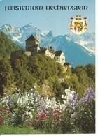 (a) Liechtenstein : Chateau De  Vaduz - Liechtenstein