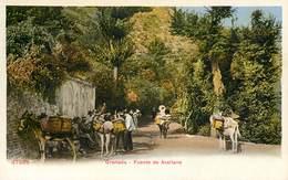 GRANADA FUENTE DE AVELLANO ESPANA PHOTOCHROME 1900 ESPAGNE - Granada