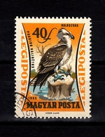 Hungary, 1962- Birds. Pandion Haliaetus. CancelledNH,. - Eagles & Birds Of Prey