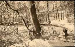 BRuxelles /  Rouge-Clôitre - Forêts, Parcs, Jardins