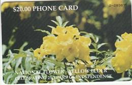 Bahamas - National Flower - Bahama's