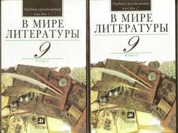 Textbook - Reader For Grade 9 School. 2006 Two Books - Russia - School - Russian - Literature - Interesting. - Livres, BD, Revues