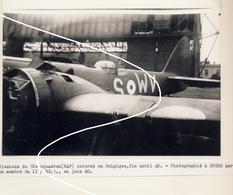 JL 1 RAF Drôle De Guerre Avril 40 Blenheim Bombardier Posé à Evere WV-S   Repro - 1939-45