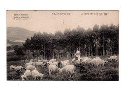 CPA 15 - En Auvergne - La Bergère Aux Champs - Francia