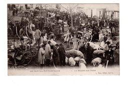 CPA 15 - En Auvergne - Le Marché Aux Porcs - France