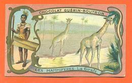 """CHROMO Chocolat Guérin Boutron """" Les Mammifères - La Girafe """" - Guerin Boutron"""