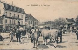 I75 - 74 - RUMILLY - Haute-Savoie - Le Pré De Foire - Rumilly