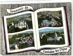 1 Cpsm Souvenir De Fontaine Les Dijon - France