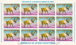 Guinea Equatoriale - Caribù, Foglio Annullo I° Giorno - Usato° - Guinea Equatoriale