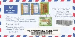 Ethiopia 2005 Alemaya University Prehistory Sabean Inscription Amaranth Grain Food Registered Cover - Préhistoire