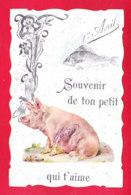 1er Avril-128A28 Un Poisson, Un Cochon En Découpis, Souvenir, Cpa BE - 1er Avril - Poisson D'avril