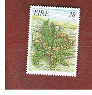 IRLANDA (IRELAND) -  SG 633   -    1986 FERNS: RUSTY-BACK   -     USED - 1949-... Repubblica D'Irlanda