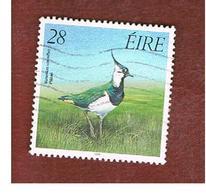 IRLANDA (IRELAND) -  SG 734    -    1989  BIRDS: VANELLUS VANELLUS   USED - 1949-... Repubblica D'Irlanda
