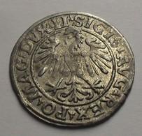 1547 - Lituanie - Lithuania - Polgrosz Litewski (½ Gros Lituanien), Sigismund  II August, Argent, Silver - Lithuania