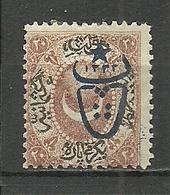 Turkey; 1917 Overprinted War Issue Stamp 20 P. - Ungebraucht