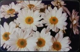 Telefonkarte Rumänien - Blumen , Flowers - 07.2003 - Rumänien