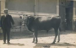 I77 - 38 - GRENOBLE - Isère - Carte Photo - Concours Agricole Grenoble 1924 - M. Carrageat à St-Pierre-d'Allevard - Grenoble