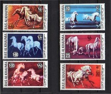 Horses MNH Set Complete PERFORATED Michel # 656 - 662 (R10) - Ra's Al-Chaima