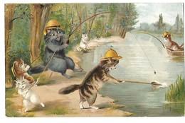 ILLUSTRATEUR SIGNE M B DES CHATS A LA PECHE 1904 CPA 2 SCANS - Illustratoren & Fotografen
