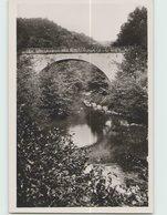 11 RENNES LES BAINS ... Le Pont De Sougraigne - France