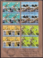 Argentine - 2011 - Lettre - Sports - Volleyball - Volleyball - Volleyball - Volleyball - Timbres Avec Relief - Lettres & Documents
