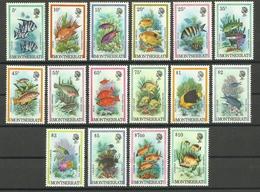 MONTSERRAT  1981  FISH  SET  MINT - Pesci