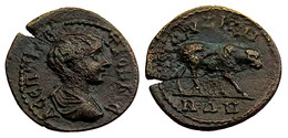 [H] +++ Geta AE23 -  KYZIKOS / CYZICUS  -- MYSiA -- Calf Reverse - RARE +++ - Römische Münzen