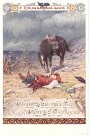 Ukraine Ucraina Song Music War Horse - Ukraine