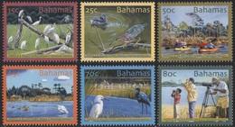 M139- Bahamas 2004 Vögel Birds Plants Tree Geschütztes Feuchtgebiet Harold And Wilson Ponds. - Bahamas (1973-...)